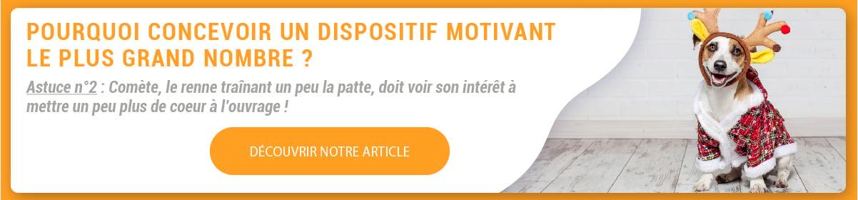 ASTUCE DE LAVENT 10 - Petit