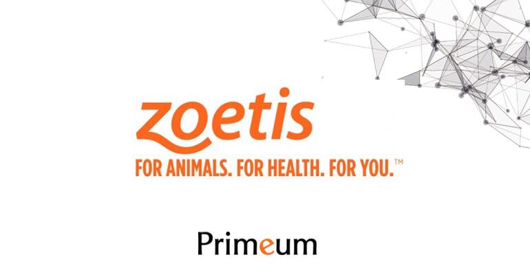 Zoetis, leader mondial de la santé animale refond ses dispositifs de primes